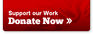 Button: support our work, donate now!